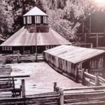 B&W photo of heritage octagonal barn, wooden barn and corral