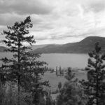 B&W landscape photo of a lake, pine trees in foreground